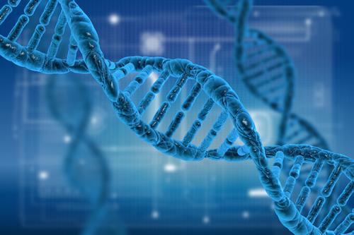 遺伝子とは?【epier エピエ DNA&腸内フローラ 知識編】